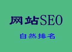 网站建设哪家公司好:SEO3个有效的推广方法